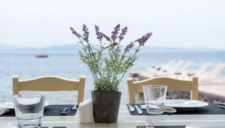 Armeni Santorini Restaurant 10