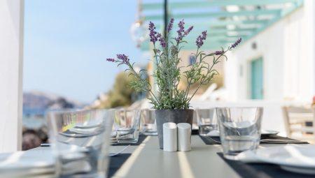 Armeni Santorini Restaurant 9
